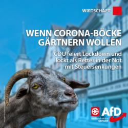 CDU_Steuern