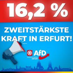 16 Prozent